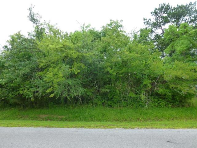 65 Piping Rock Place, Coldspring, TX 77331 (MLS #6391565) :: The Bly Team