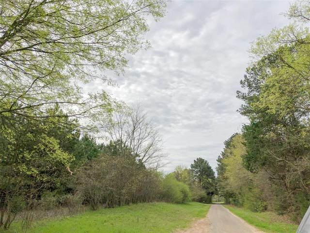 0 Cr 3201, Omaha, TX 75571 (MLS #63920846) :: Connell Team with Better Homes and Gardens, Gary Greene