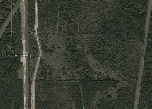 0 Pelican Road, Shepherd, TX 77371 (MLS #63972925) :: The Freund Group