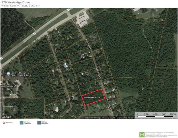 176 Westridge Drive, Huntsville, TX 77340 (MLS #6398238) :: The SOLD by George Team