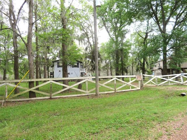385 County Road 2853, Cleveland, TX 77327 (MLS #63992067) :: The SOLD by George Team