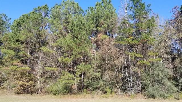 8927 Grand Lake Estates Drive, Montgomery, TX 77316 (MLS #64052367) :: Caskey Realty