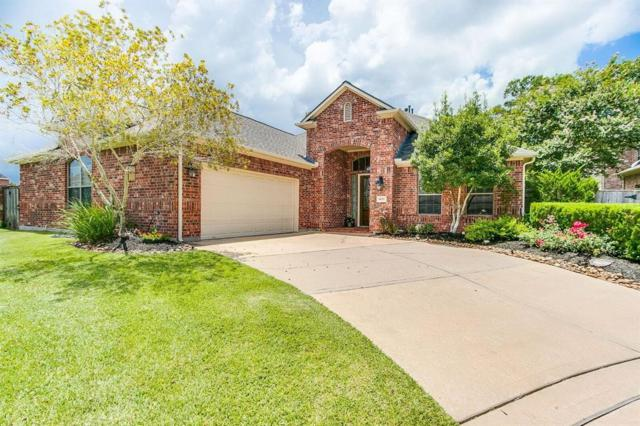 8606 Two Sisters Court, Missouri City, TX 77459 (MLS #64068796) :: Team Sansone