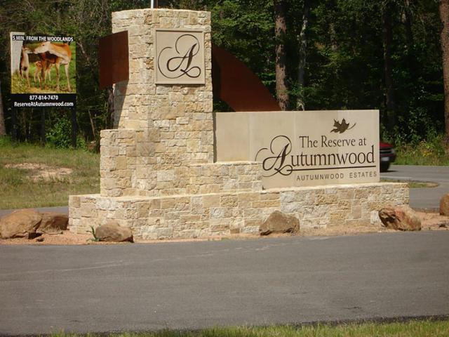 1094 Autumnwood Drive, Magnolia, TX 77354 (MLS #64151984) :: NewHomePrograms.com LLC