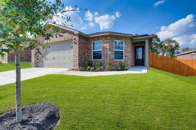 22610 Steel Blue Jaybird Drive, Hockley, TX 77447 (MLS #64174906) :: The Andrea Curran Team powered by Styled Real Estate