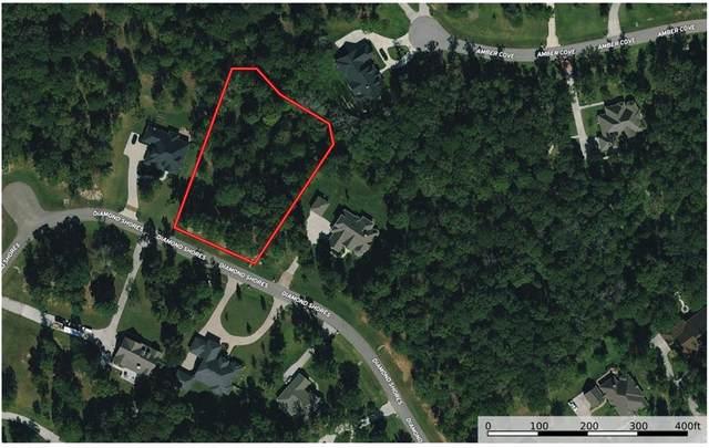 14677 Diamond Shores Shores, Willis, TX 77378 (MLS #64191022) :: My BCS Home Real Estate Group