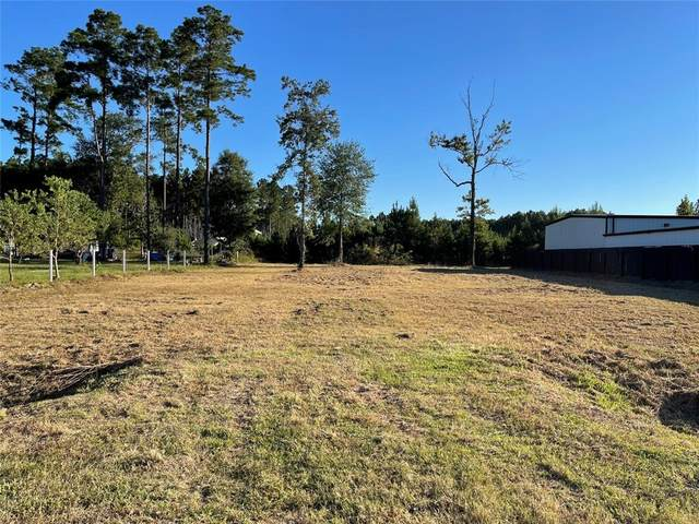 46 County Road 3558, Cleveland, TX 77327 (MLS #64228884) :: Caskey Realty