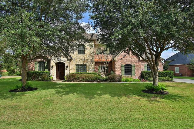 32602 Watersmeet Street, Fulshear, TX 77441 (MLS #64274090) :: See Tim Sell