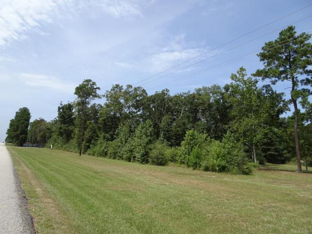 18281 Fm 1097, Willis, TX 77378 (MLS #64346124) :: Connect Realty