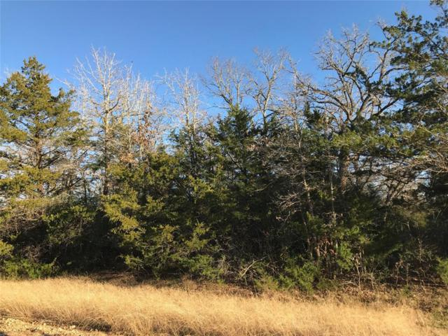 000 Overlook Drive, Caldwell, TX 77836 (MLS #64350755) :: Texas Home Shop Realty
