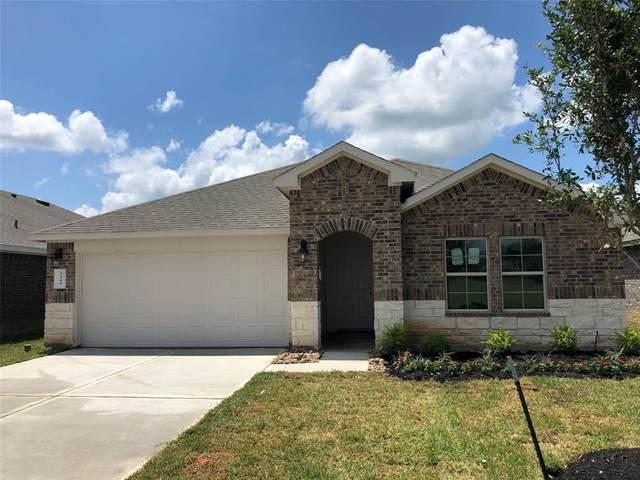 2219 Silver Dove Lane, Conroe, TX 77301 (MLS #64390768) :: The Home Branch