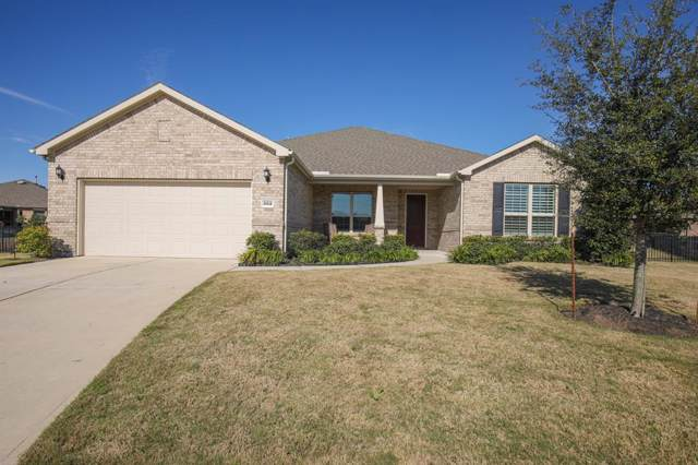 202 Catclaw Court, Richmond, TX 77469 (MLS #64402862) :: CORE Realty