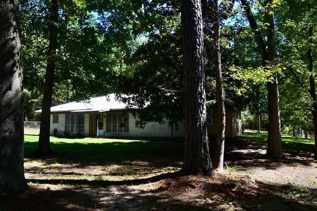 243 Thunderbird Road, Grapeland, TX 75844 (MLS #64411857) :: Lerner Realty Solutions