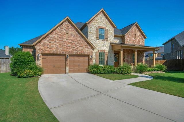 17015 Swamp Bluet Court, Conroe, TX 77385 (MLS #64442947) :: The SOLD by George Team