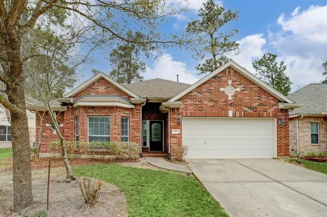 10 Sheltered Arbor Court, The Woodlands, TX 77382 (MLS #64446128) :: Christy Buck Team