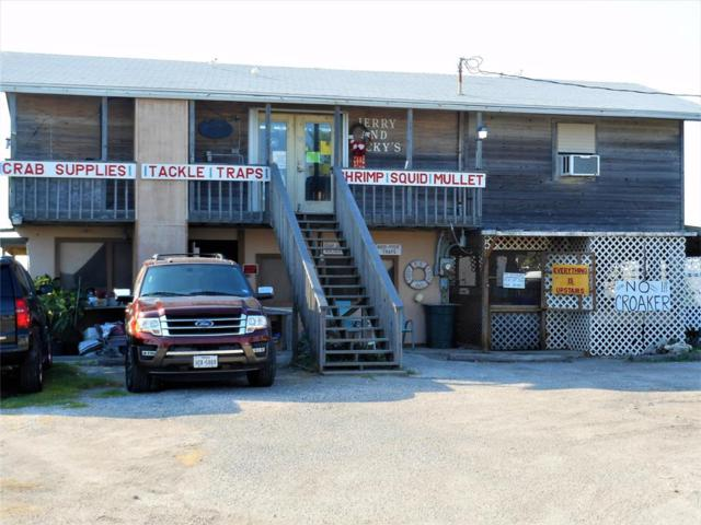 17630 Termini San Luis Pass Road, Galveston, TX 77554 (MLS #64469929) :: The Heyl Group at Keller Williams