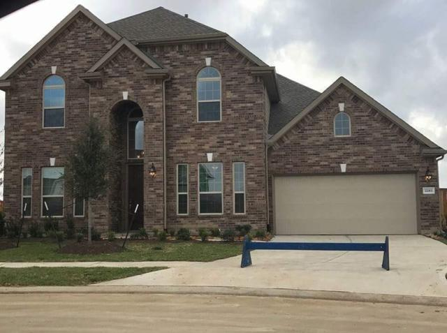 2283 Rising Bay Court, League City, TX 77573 (MLS #64472837) :: REMAX Space Center - The Bly Team