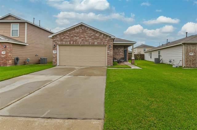 12054 Helvick Crescent Avenue, Houston, TX 77051 (MLS #64508432) :: Christy Buck Team