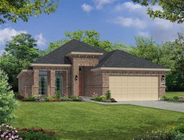 110 Gray Vervain Ct, Montgomery, TX 77316 (MLS #64544005) :: Texas Home Shop Realty