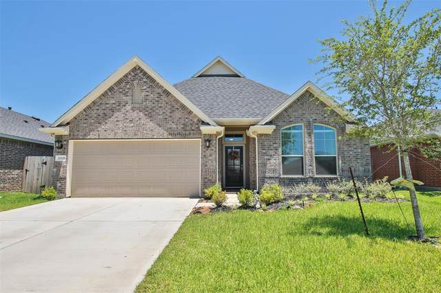 31118 Gulf Cypress Lane, Hockley, TX 77447 (MLS #64617018) :: The Andrea Curran Team powered by Styled Real Estate