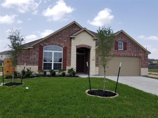 20414 Bushwyn Lane, Katy, TX 77449 (MLS #64625231) :: Christy Buck Team