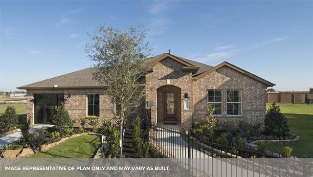 18534 Anderwood Forest Drive, Richmond, TX 77407 (MLS #6465007) :: NewHomePrograms.com LLC