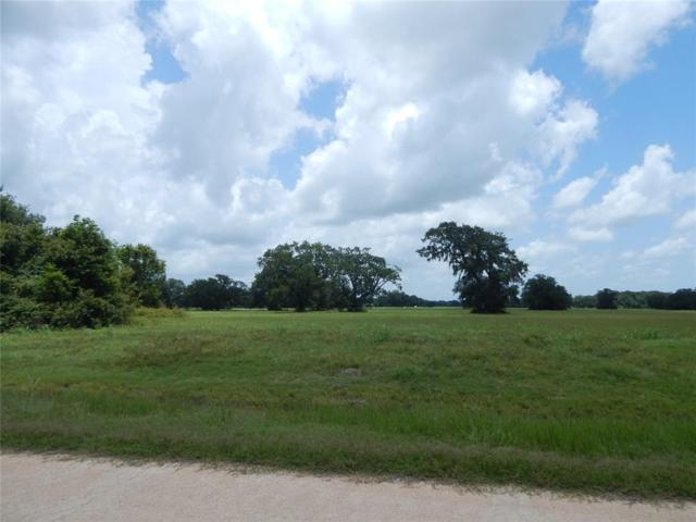 417 Pony Trail, Angleton, TX 77515 (MLS #64654336) :: The SOLD by George Team