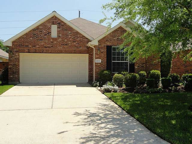 25035 Spring Ash Lane, Katy, TX 77494 (MLS #64727061) :: Giorgi Real Estate Group