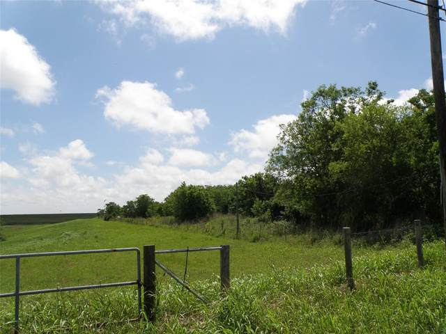 3400 Bay St Extension, Texas City, TX 77590 (MLS #64752909) :: Michele Harmon Team