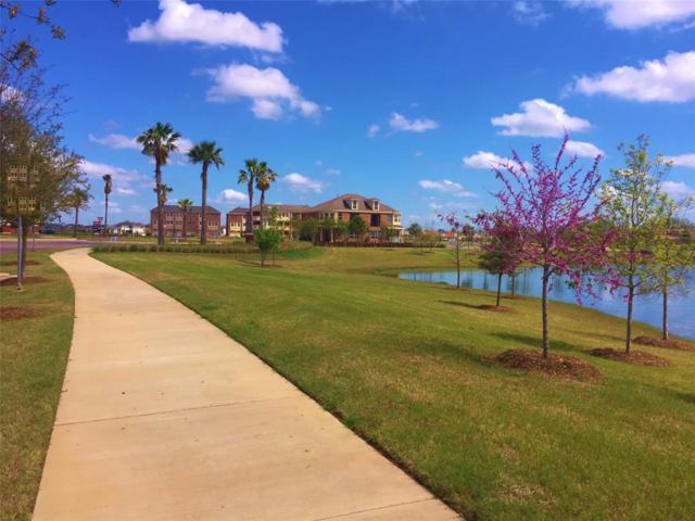 131 Grace Point, Sugar Land, TX 77498 (MLS #64767542) :: Texas Home Shop Realty