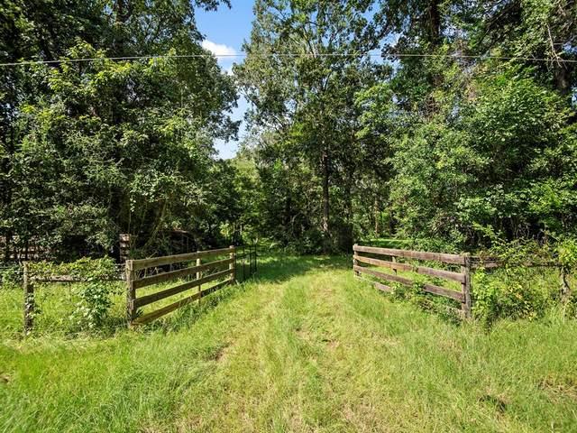250 Buck Creek Road, Shepherd, TX 77371 (MLS #64818548) :: Michele Harmon Team