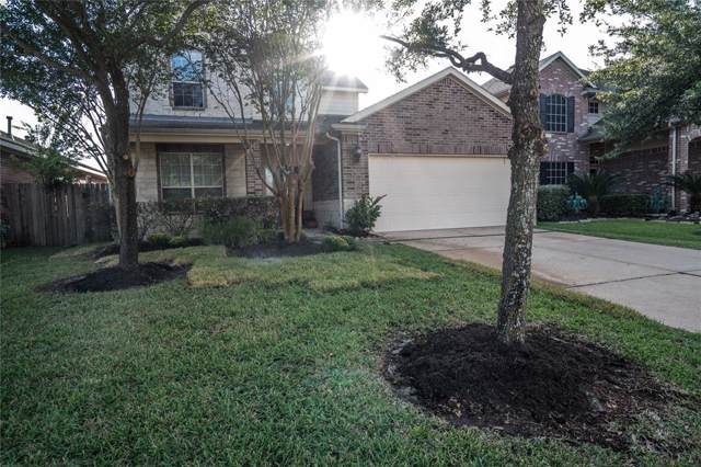 25223 Calico Woods, Katy, TX 77494 (MLS #64842442) :: Phyllis Foster Real Estate