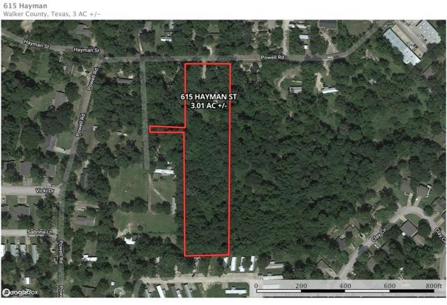 615 Hayman Street, Huntsville, TX 77340 (MLS #64856114) :: The Home Branch