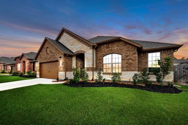 14145 Emory Peak Court, Conroe, TX 77384 (MLS #64981764) :: Texas Home Shop Realty