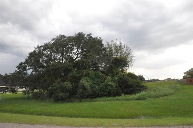 1451 Lakeland Circle, Rosharon, TX 77583 (MLS #65041661) :: Michele Harmon Team