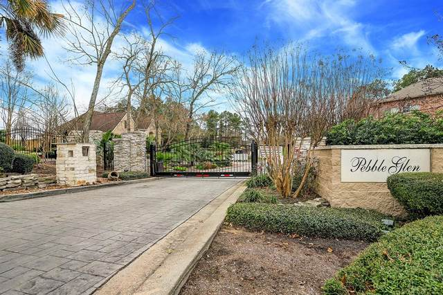 12346 Pebble View Drive, Conroe, TX 77304 (MLS #65063018) :: The Bly Team