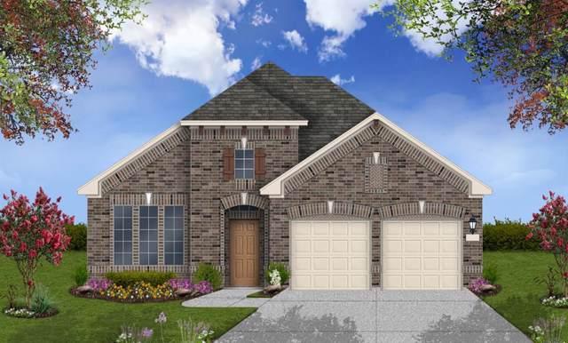 17559 Sunset Skies Road, Conroe, TX 77385 (MLS #6510791) :: Rachel Lee Realtor