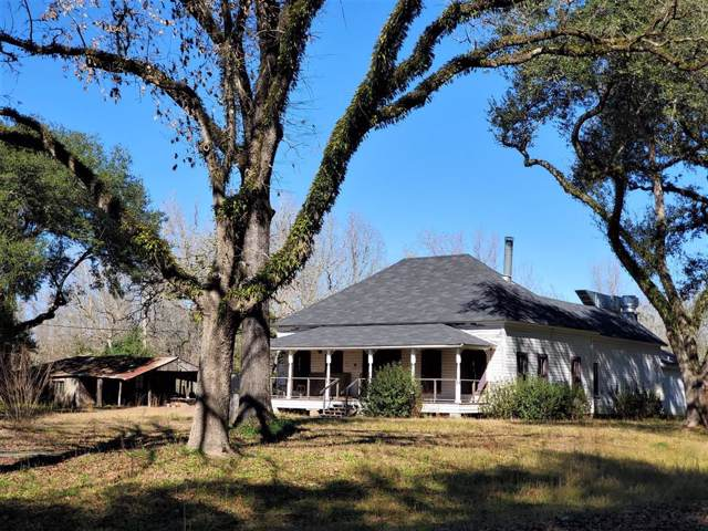335 County Road 4450, Hillister, TX 77624 (MLS #6511335) :: The Parodi Team at Realty Associates