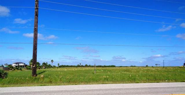 Lot 1(1-1) Seabird Acres, Galveston, TX 77554 (MLS #65176264) :: Michele Harmon Team