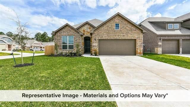 4711 Bluestem Prairie Drive, Rosenberg, TX 77469 (MLS #65256252) :: The Wendy Sherman Team