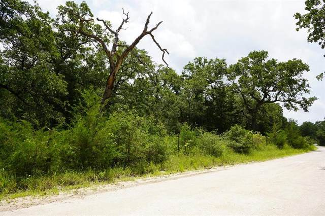 0002 County Road 190, Anderson, TX 77830 (MLS #65407202) :: Lerner Realty Solutions