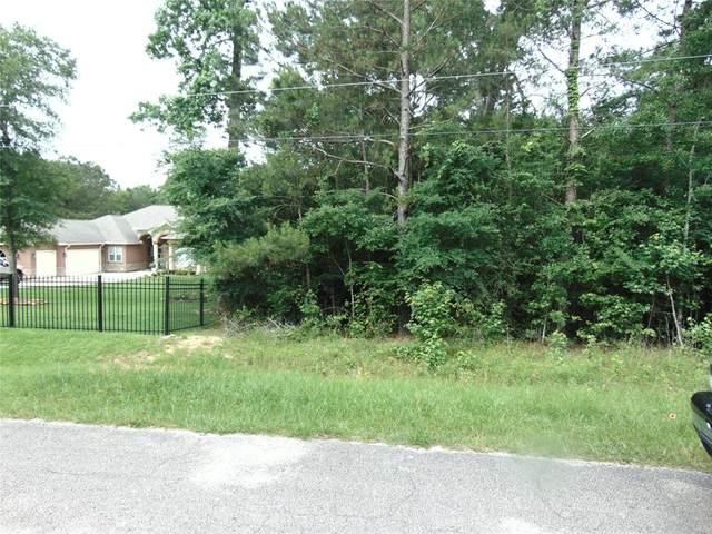 19219 Serpenteer Drive, Porter, TX 77365 (MLS #6542844) :: NewHomePrograms.com
