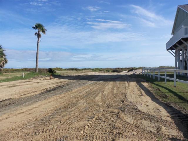1746 Redfish Ln, Crystal Beach, TX 77650 (MLS #65429546) :: Texas Home Shop Realty
