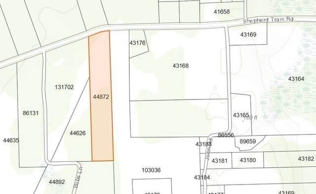 0 Shepherd Tram Road, Shepherd, TX 77371 (MLS #6543659) :: Bray Real Estate Group