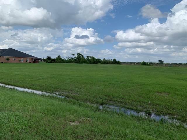 13202 Sunrise Bluff Drive, Hockley, TX 77447 (MLS #65488916) :: The Property Guys