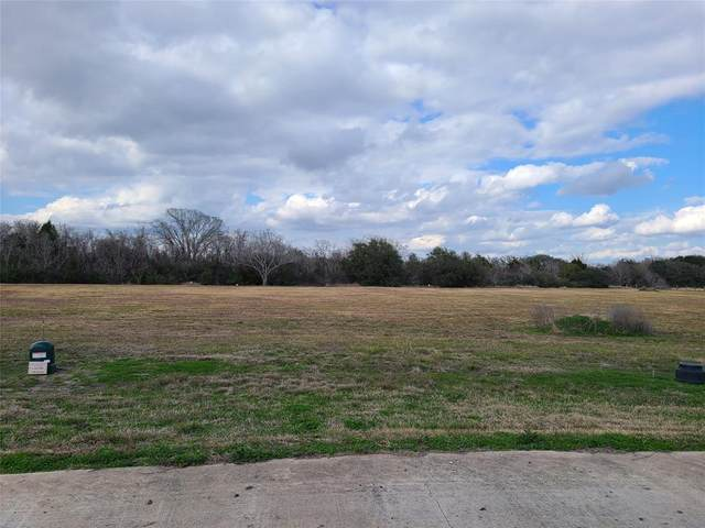 0 Cattle Dr Drive, Bay City, TX 77414 (MLS #65491474) :: Michele Harmon Team