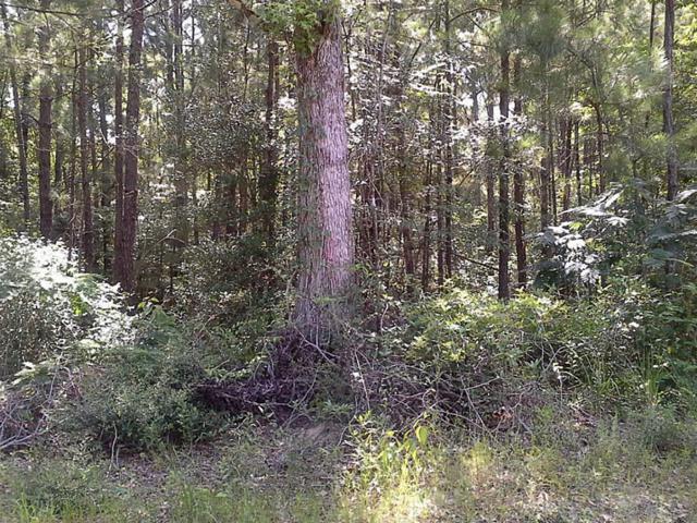 TBD Fm 692, Burkeville, TX 75932 (MLS #65503588) :: Magnolia Realty