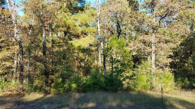 49 N Forest Drive, Huntsville, TX 77340 (MLS #65539628) :: The SOLD by George Team