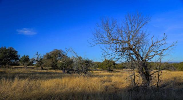 0 Spicewood Trails Dr Drive, Spicewood, TX 78669 (MLS #65551023) :: Texas Home Shop Realty