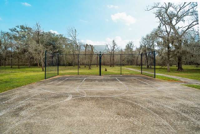 727 Lily Lane, Rosharon, TX 77583 (MLS #65582313) :: Texas Home Shop Realty